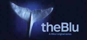 the_blu